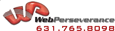 Web Perseverance,Internet Marketing,Website Developement